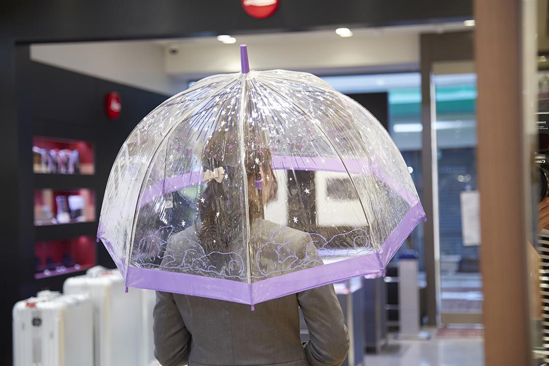 Fulton Umbrellas(フルトンアンブレラ) / BirdcageMOONBAT Original Polar Bear (バードケージムーンバット オリジナル ポーラベア)